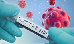 An overview of Coronavirus
