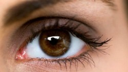 5 ways to enhance your eye sight