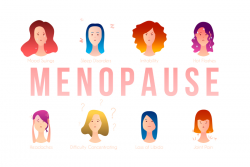 The effects of menopause on a female's body