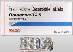 A box and a blister of generic Prednisone 5mg Tablets